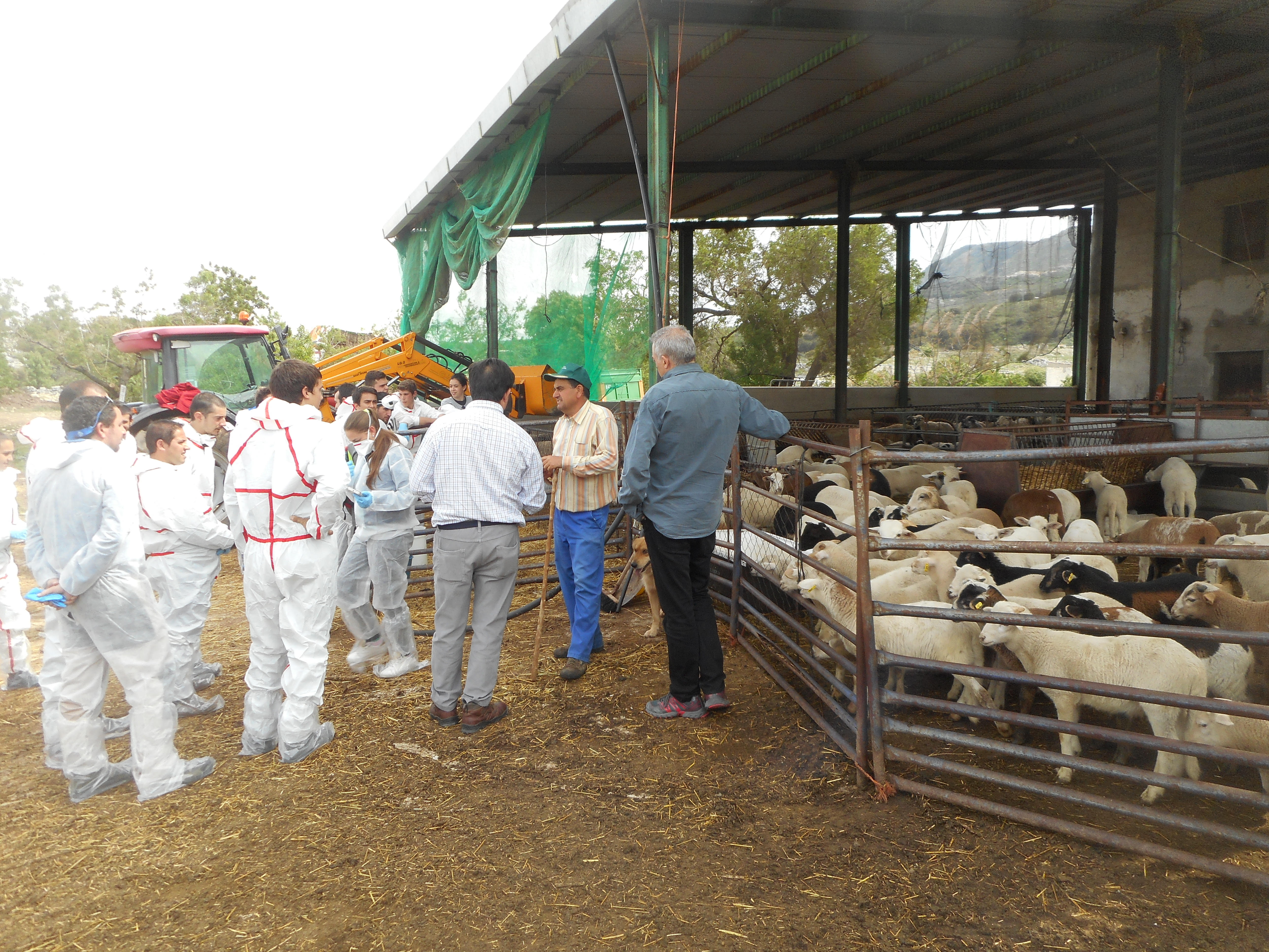 escuela de pastores 2